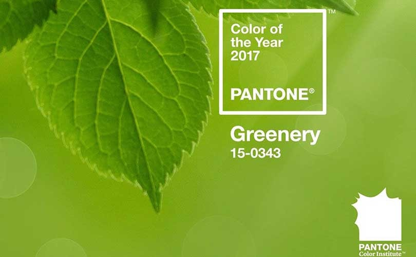 """Greenery"" ist Pantone Farbe des Jahres"
